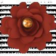 October Days Red Flower