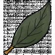 Cozy At Home Doodle Leaf