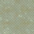 Mulled Cider Green Gingham Paper