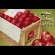 Mulled Cider Aplle Picking Season Journal Card 4x6