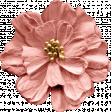 Hometown Flower 2