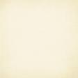 Apricity Solid Cream Paper