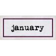 Apricity Label January