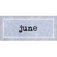Apricity Label June