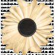 Bistro Flower