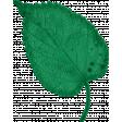 Healthy Measures Leaf
