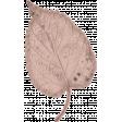 Healthy Measures Beige Leaf