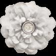 Rustic Wedding White Flower