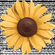 Nana's Kitchen Yellow Flower