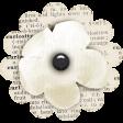Naturally Curious Cream Flower