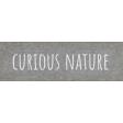 Naturally Curious Curious Nature Word Art Snippet