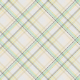 Naturally Curious Plaid Paper
