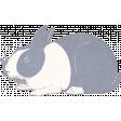Mulberry Bush Bunny