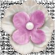 Mulberry Bush Lavender Flower