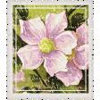 Mulberry Bush Postage Stamp