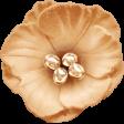 Classy Cream Flower