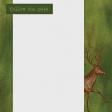 Camp Out Woods Deer Journal Card 4x4
