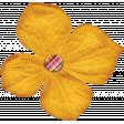 Sweet Autumn Gold Flower