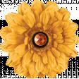 Sweet Autumn Yellow Flower