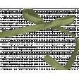 Chicory Lane Element Green Bow