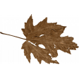 Chicory Lane Element Brown Leaf