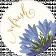 Chicory Lane Element Round Sticker Refresh