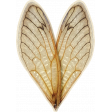 Chicory Lane Element heart wings