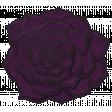 My Life Palette - Succulent Doodle (Purple Ecchevaria)