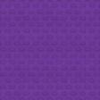 Karate Paper 03 Purple Belt