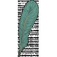 Bohemian Feather 3 Illustration