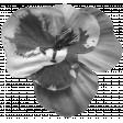 Flower 141 Template