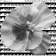 Flower 142 Template