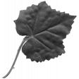 Leaf 071 Template