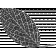 Leaf 052 Template