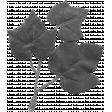 Leaf 058 Template