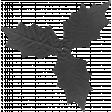 Leaf 060 Template
