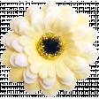 Friendship elements kit - Flower01