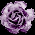 Friendship elements kit - Flower02