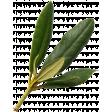 Friendship elements kit - Leaves