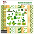 Saint Patrick's Day Bird Kit