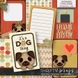 Pet Shop (journal cards)