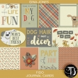 Fido (journal cards)