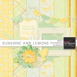 Sunshine And Lemons Blog Hop Mini Kit