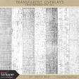 Transparent Overlays- Distressed Set 01