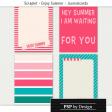 @Sas_Scrapkit_EnjoySummer_preview_journalcards