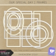 Our Special Day - Frames