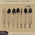 Vintage Images Kit - Feathers