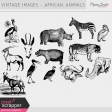 Vintage Images Kit - African Animals