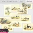 Kenya Vintage Pocket Cards Kit