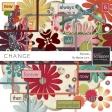 Change Elements Kit